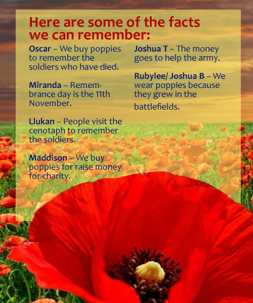 Remembrance Day | Puffins Blog