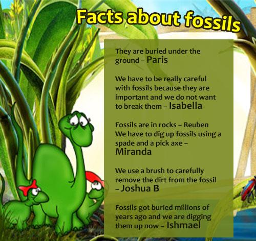 fossils001