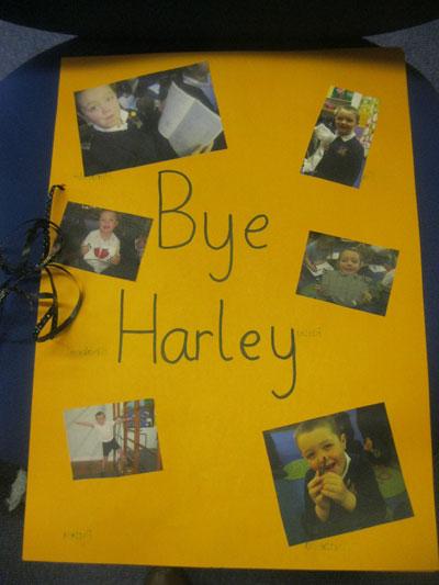 harley001
