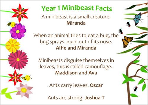 minibeasts001